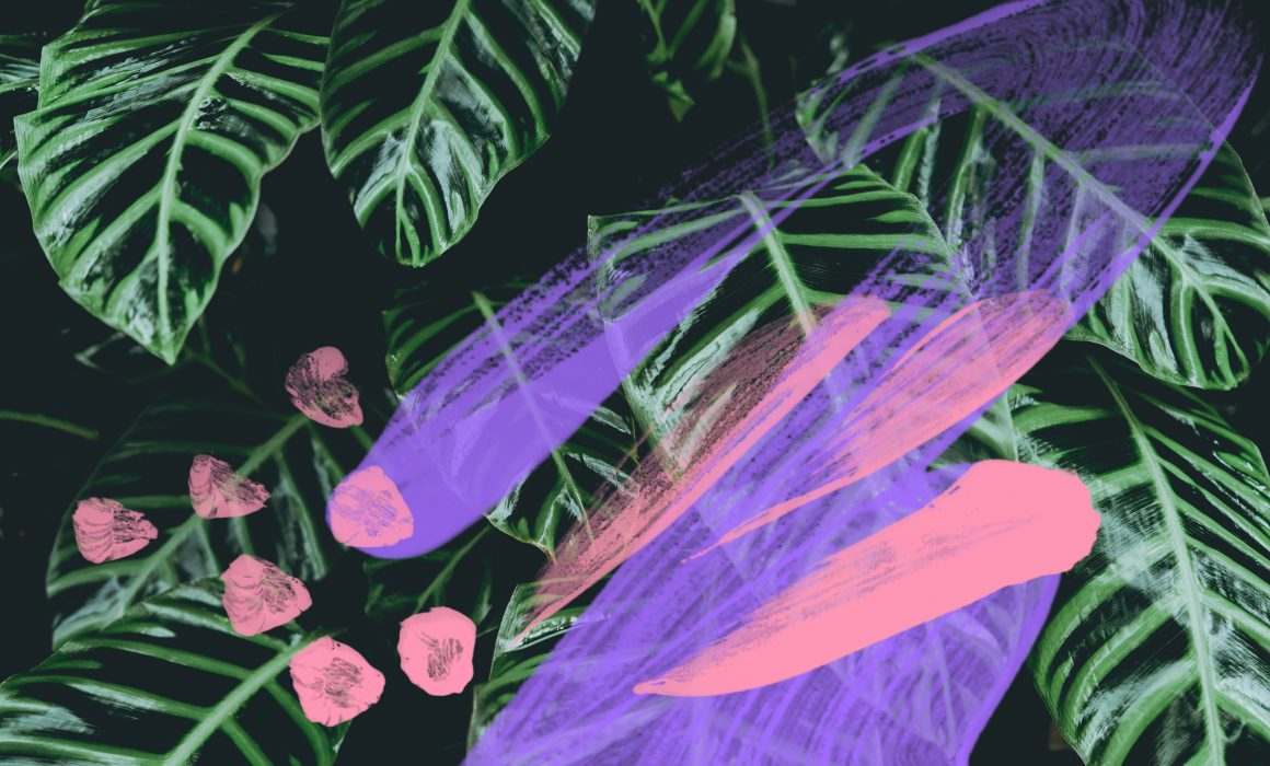 Calathea leaf, abstract painting