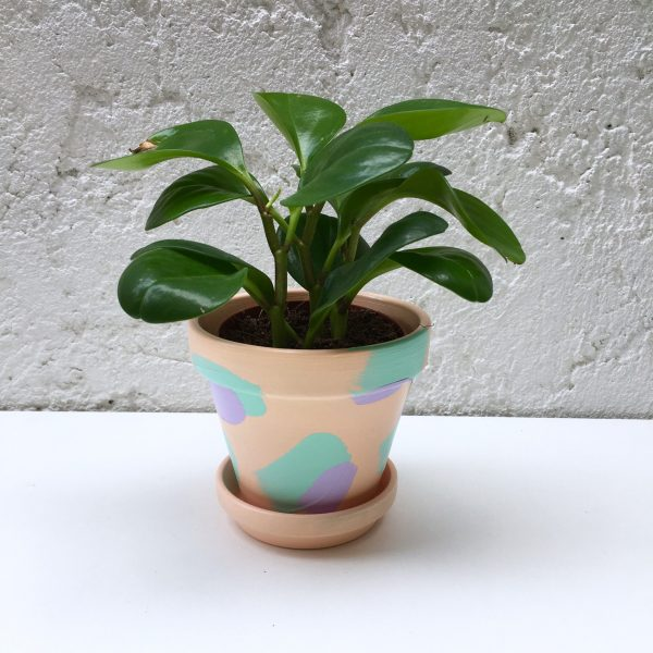 Peach indoor plant pot, hand painted plant pot in peach and purple