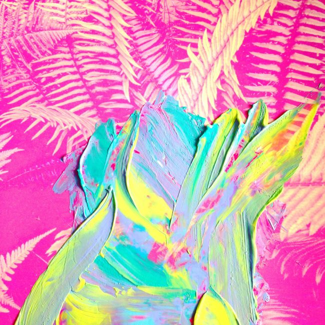 Pink ferns with colourful painted brushstrokes by Sara Hoque 2017