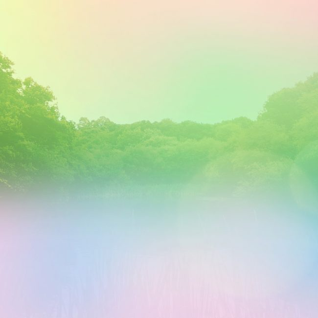 Pastel faded image of woods with colourful gradient by Sara Hoque 2018